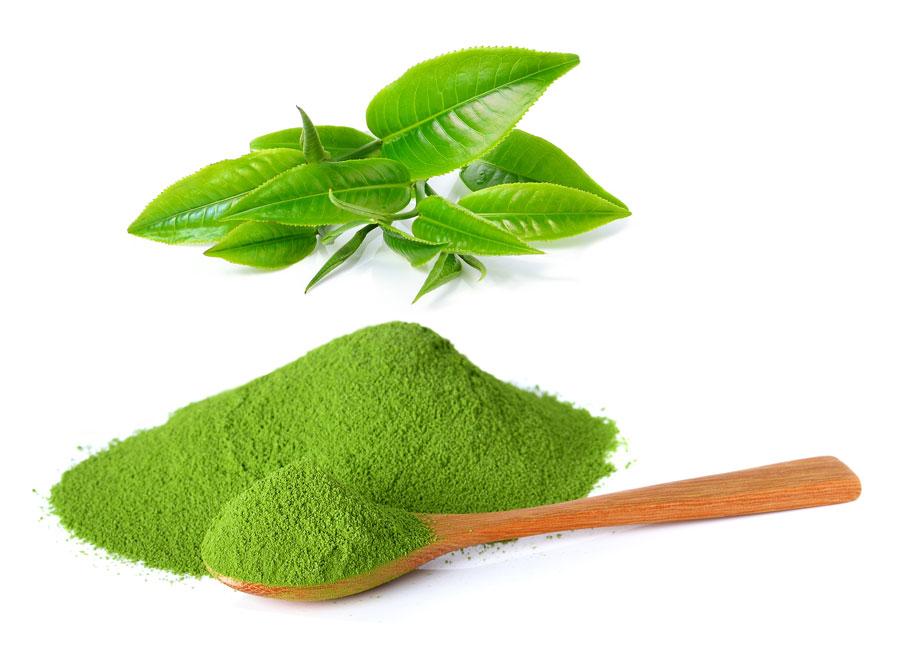 Matcha tea properties and contraindications